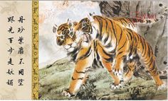 1pcs China Meticulous Tiger Painting Calligraphy Postcard Tiger Couple #31
