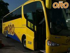 LAS MEJORES RUTAS DE AUTOBUSES. Trabajamos para brindarle el mejor servicio en transporte de pasajeros, llevándole de manera segura y confiable a su destino. En Autobuses Oro, le garantizamos servicios de primera clase en cada uno de sus viajes. #lasmejoresrutasdeautobuses