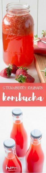 Kombucha Recipe: How to make Strawberry Rhubarb Kombucha | Spring DIY Kombucha Flavors