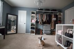 Dressing Room Update - Elfa Closet System//stephienese