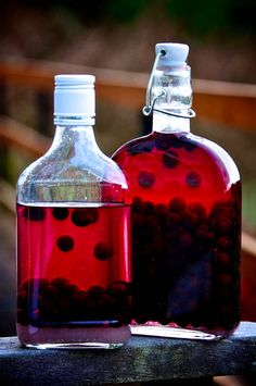 Foraging for sloe berries and infusing your own sloe gin