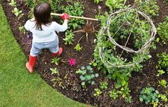 Try these organic tips and tricks to get the most out of your planting space.