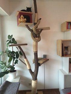 Kratzbaum, mit Liebe selbst gemacht