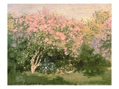 Lilac in the Sun, 1873 Giclee Print by Claude Monet - AllPosters.ca