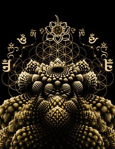 Sacred Geometry - Romanesca Fractal Fruit Men's T-shirt Flower of Life #sacredgeometry