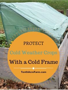 Protect Cold Weather Crops with a Cold Frame A cold frame can help you to continue growing through fall, winter, and spring. Learn about cold frames and other structures to grow a four-season garden. Cold Frame Gardening, Organic Gardening, Gardening Tips, Arizona Gardening, Vegetable Gardening, Winter Plants, Winter Garden, Landscaping Plants, Outdoor Landscaping