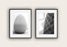 Set of 2 Black and White Photographs of the Seed Sculpture, Art Photography, Wall Art, Monochromatic photo, Minimalistic Decor.