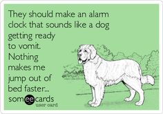They should make an alarm clock that sounds like a dog getting ready to vomit. Nothing makes me jump out of bed faster...