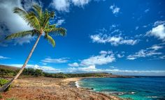 Manele Bay - 7 Of The Best Beaches of Hawaii You Should Not Miss