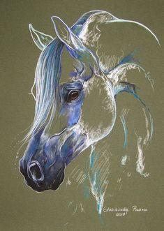 Arabian horse by Paulina Stasikowska - Painted Horses - Seven Horses Painting, Horse Oil Painting, Watercolor Horse, Horse Drawings, Animal Drawings, Pencil Drawings, Animal Paintings, Art Paintings, Pastel Paintings