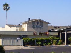 Steamers is known for its great seafood and views. Pismo Beach is known for its clams, sand dunes and butterflies. Activities include swimming, surfing, fishing, off-roading, sunbathing and more.