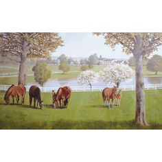 Horse Farm With White Fences Wallpaper Mural - Small