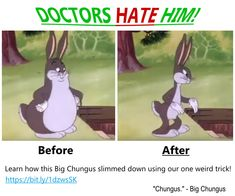 32 Best Big Chungus Images In 2019