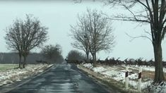 Lenyűgöző videó: óriási szarvascsorda vágtatott át az úton Vas megyében   NLCafé Merida, Snow, Outdoor, Outdoors, Outdoor Games, The Great Outdoors, Eyes, Let It Snow