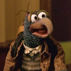 Gonzo - my favorite whatever