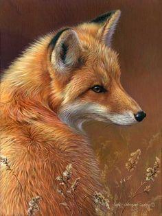 Curious - Red Fox, Wildlife art by Joni Johnson-Godsy. Wild Life, Beautiful Creatures, Animals Beautiful, Animals And Pets, Cute Animals, Funny Animals, Fantastic Fox, Fox Painting, Fox Pictures