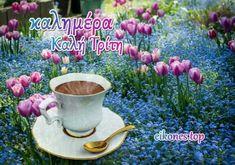 Τρίτη σήμερα και.... μια καλημέρα για όλους! (εικόνες top) - eikones top Plants, Plant, Planets