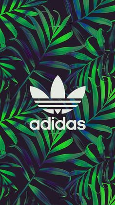 Plant Wallpaper, Wallpaper Space, Dope Wallpapers, Latest Wallpapers, Adidas Iphone Wallpaper, Black And White Wallpaper Iphone, Adidas Backgrounds, Pineapple Wallpaper, My Little Pony Characters