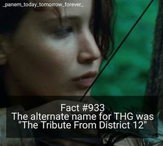 See this Instagram photo by @_panem_today_tomorrow_forever_ • 48 likes