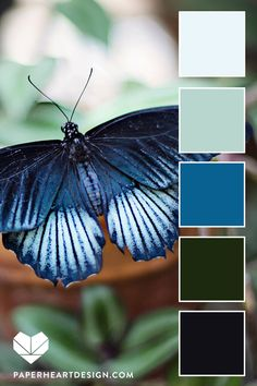 Color Palette: Pantone Color of the Year Classic Blue —. Best Picture For colour palette kid Azul Pantone, Pantone Colour Palettes, Pantone 2020, Pantone Color, Green Colour Palette, Blue Colour Palette, Colour Schemes, Color Trends, Pantone Greenery