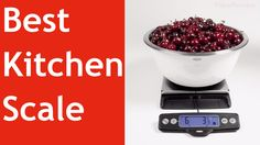 The Best Kitchen Scale   ViewReview