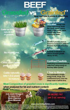 The benefits of grass-fed versus grain-fed beef.
