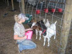 Miranda on the farm