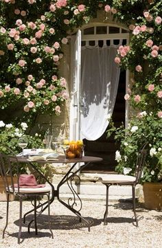 One day I will cover a house in rose climbers, council estate, city apartment or cottage...it WILL happen!!