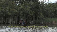 Documentário À Margem do Xingu - Vozes Não Consideradas - Em viagem pelo rio Xingu encontramos inúmeras pessoas, moradores de toda uma vida, que serão atingidos pela possível construção da hidrelétrica de Belo Monte. Relatos de ribeirinhos, indígenas, agricultores, habitantes da região de Altamira na Amazônia, assim como especialistas da área compõem parte deste complexo quebra-cabeça.