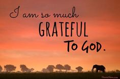 25 quotes from LDS leaders on gratitude #lds #quotes #Thanksgiving