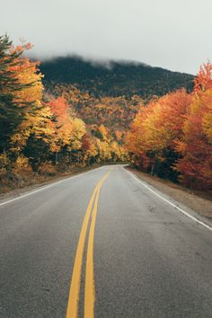The Kanc is over-saturated - kancamagus highway, new hampshire