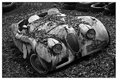 old rally Bavaria Jaguar - so sad. places where has on the things people abandoned. Classic Sports Cars, Classic Cars, Automobile, Jaguar Xk120, Rust In Peace, Rusty Cars, Abandoned Cars, Abandoned Places, Car Wheels