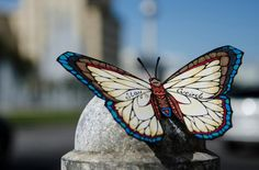 butterfly-effect-Andreas-Preis
