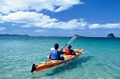 Coromandel Adventures provides a great range of Coromandel tours and adventures that will allow you to see some of the hidden secrets on the Coromandel - things only the locals know about! Sky Adventure, The Locals, New Zealand, Kayaking Trips, Cathedral, Tourism, Boat, Earth, Water
