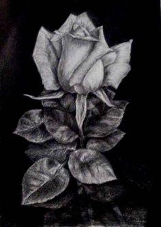 цветы. рисунок карандашом. мои рисунки.