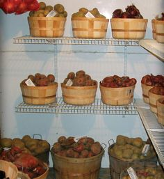 Article on preserving food for winter storage has a pretty good section on basement root storage rooms toward the end.