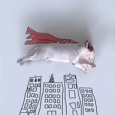 Redditor CaligulaWouldBlush posted these photos to reddit earlier. This dog owner creates the funniest illustrations with his bull terrier.. and they lookpretty cool. Art is everywhere.. Check out photos below and let me know how cool you think they are...