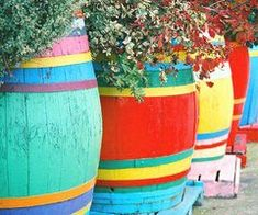 "Colorfully painted barrels hold plants - from ""Two Women and a Hoe"" - check them out on Facebook"