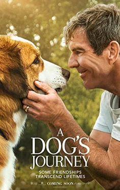Watch A Dog's Journey online for free at HD quality, full-length movie. Watch A Dog's Journey movie online from The movie A Dog's Journey has got a rating, of total votes for watching this movie online. Movies To Watch Free, All Movies, Movies Online, Movies And Tv Shows, Movie Tv, Imdb Movies, Netflix Movies, Movie Blog, Movies Free