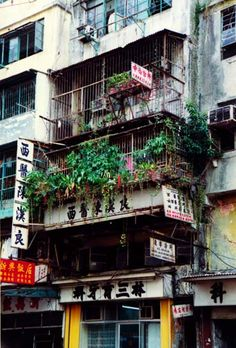 The Walled City Of Kowloon - SkyscraperPage Forum