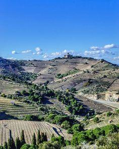 . Le fort St Elme domine les côteaux de vins de Collioure et de Banyuls  ---------------------------------------------------------------------------- #landscape #cotevermeille #visitpo #wine #pyreneesorientales #payscatalan #south #suddefrance #discoverlanguedocroussillon #tourismeoccitanie #occitaniemylove #view #jaimelafrance #travelfrance #visitlafrance #vigne #winelovers #nature #terroir #bluesky #neverstopexploring #travelblogger #visit #wanderlust #patrimoine #panorama #vin…