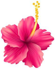 Exotic clipart hawaiian - Pencil and in color exotic clipart . Hibiscus Flowers, Exotic Flowers, Tropical Flowers, Beautiful Flowers, Flamingo Birthday, Flamingo Party, Victorian Flowers, Flower Clipart, Disney Drawings