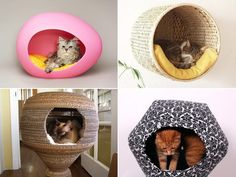 Attractive Unique Cat Beds For Pet Lovers