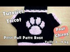 Tutoriel Tricot: Petit Pull patte rose, pour chiens de taille moyenne (3-4kg) - YouTube