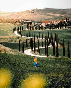 Rolling hills, vineyards and medieval castles. Drive 3 days along the scenic roads and discover some of the best things to do in Tuscany. Italy Vacation, Italy Travel, Italy Trip, Cool Places To Visit, Places To Travel, Theodora Home, Italy House, Tuscany Italy, Tuscany Food