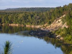 5. Garden of Eden Trail, Apalachicola Bluffs and Ravines Preserve, Bristol (Florida Panhandle)