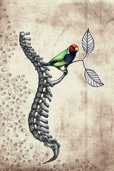 strange art. spinal cord branching out for bird. Teoduro Badiu