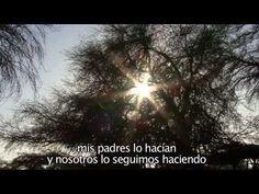 AYMARA - EL MUNDO ANDINO. Rosa Quispe Wanka - artista aymara