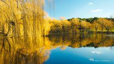 Lake in winter River, Explore, Outdoor, Scenery, Outdoors, Outdoor Games, The Great Outdoors, Rivers, Exploring