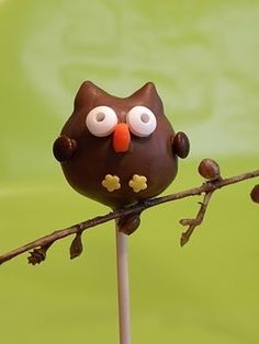 Owl cake pops by june